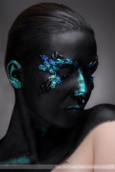 anmakeup Blue insects