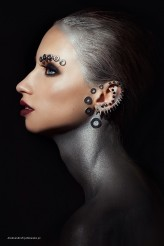 anmakeup Silver Vibes