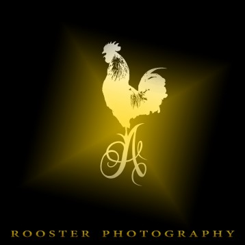 Fotograf ROOSTER_PHOTOGRAPHY