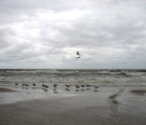 south_valley